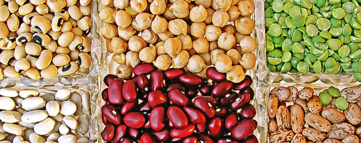 Kohlenhydrate – besser als ihr Ruf: Teil II