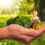 Ernährungsberater unseres Lebens